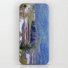 River Mountain View iPhone & iPod Skin