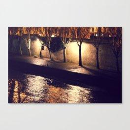 River Seine Canvas Print