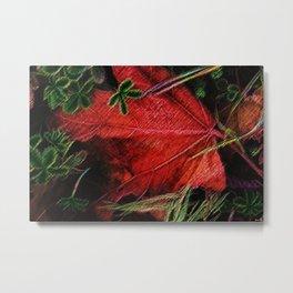 Autumn Leaves, New England--A Portrait by Jeanpaul Ferro Metal Print