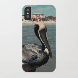 Florida Pelican Color Photo iPhone Case