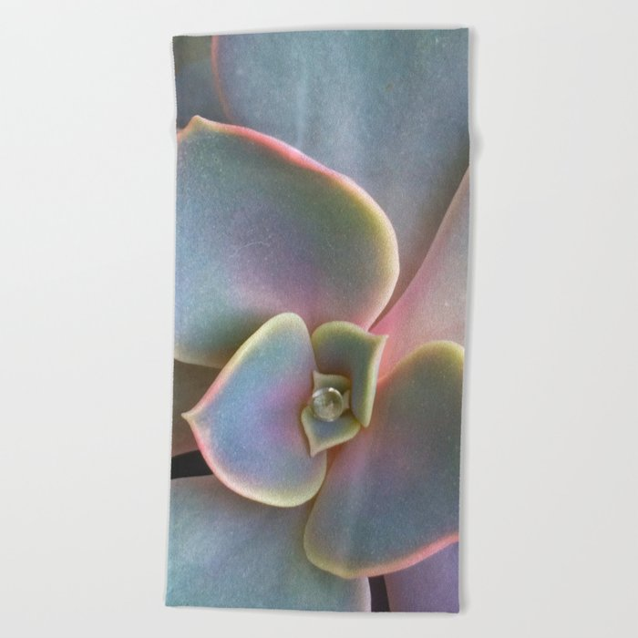 Succulent Dew Drop Beach Towel