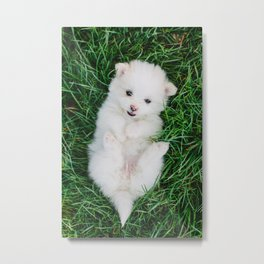 Fluffy White Cute Puppy Metal Print