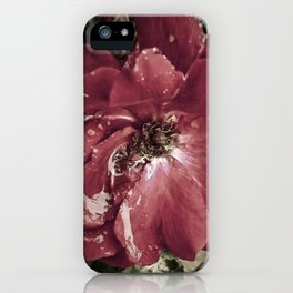 For Ten Thousand Lonely Miles iPhone Case