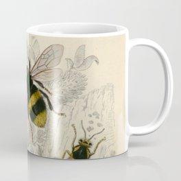 Naturalist Bee And Wasps Coffee Mug