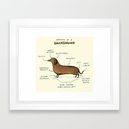 Anatomy of a Dachshund Framed Art Print