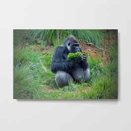 Lettuce For Lunch Metal Print
