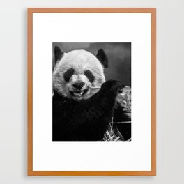 b&w Panda Framed Art Print
