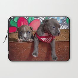 Cute Brother and Sister Pitbull Puppies with Blue Eyes Cuddling Together in a Spring Basket Laptop Sleeve