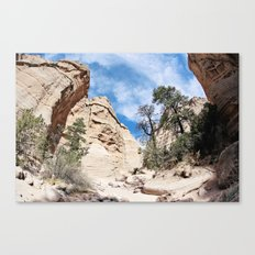 Mountain Air Canvas Print