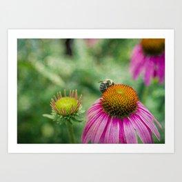 Buzzing Bee Art Print