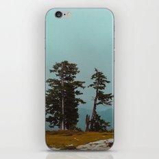 Pacific Northwest Wild iPhone & iPod Skin