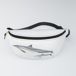 Long-beaked dolphin and baby Fanny Pack