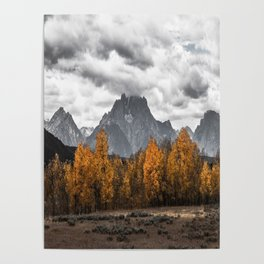 Teton Fall - Autumn Colors and Grand Tetons in Black and White Poster