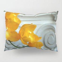 Old Yeller Pillow Sham