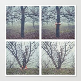 foggy days in the park Canvas Print
