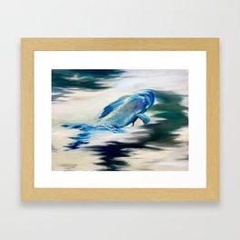 Arctic Grayling Diving Framed Art Print