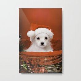 Tiny White Terrier Mix Rescue Puppy in Santa Hat for Christmas Metal Print