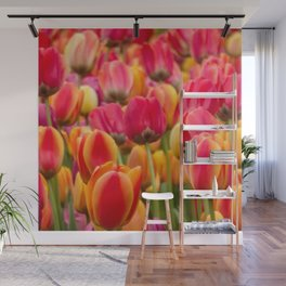 Tulips 1 Wall Mural