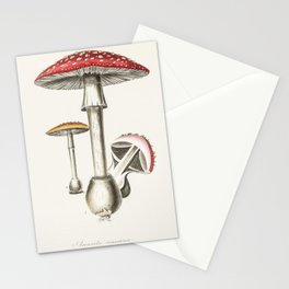 Amanita muscaria  from Medical Botany (1836) by John Stephenson and James Morss Churchill Stationery Cards
