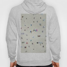 Bathing Beauties Hoody