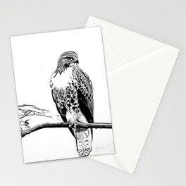 Sketched Hawk Stationery Cards