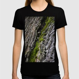 Tree trunk and mushrooms T-shirt