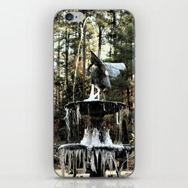 Winter's Lace iPhone Skin