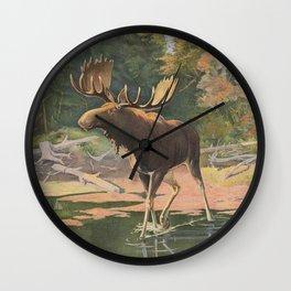 Vintage Moose Illustration (1902) Wall Clock
