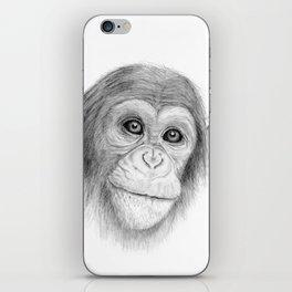 A Chimpanzee :: Not Monkeying Around iPhone Skin