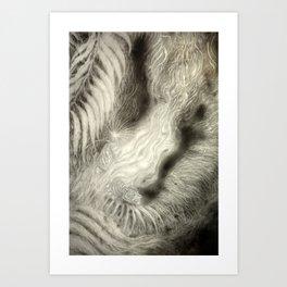 Tiger Burns Art Print