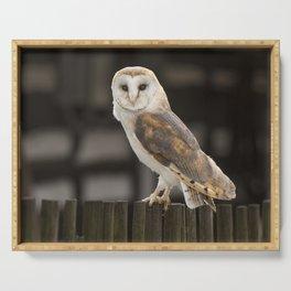 Barn Owl Serving Tray
