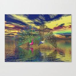 Pfauenpaar Canvas Print