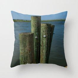 Pier Boards Throw Pillow