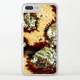 BUTTERFLY MAGNIFIED - ANTEROS FOMOSUS Clear iPhone Case