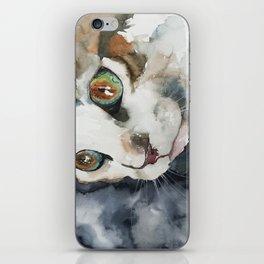 cat#13 iPhone Skin