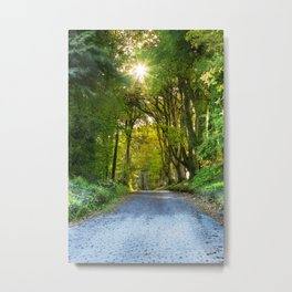 Sunset in the Alley,Clonakilty Metal Print