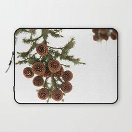 (Spruce or Fir) Cones Laptop Sleeve