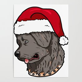 Newfoundland dog Christmas Hat Present Poster