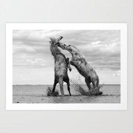 Wild Horses - Ocracoke Island, Hatteras, North Carolina black and white photograph / art photography Art Print