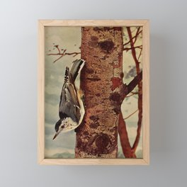 Neltje Blanchan - Bird Neighbours (1903) - White-Breasted Nuthatch Framed Mini Art Print