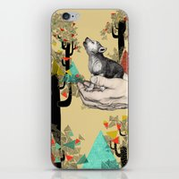 wolf iPhone & iPod Skins featuring Found You There  by Sandra Dieckmann