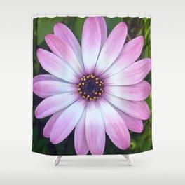 Pink Calendula Shower Curtain