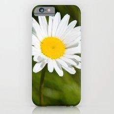White flower Slim Case iPhone 6s