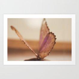 Color wings Art Print
