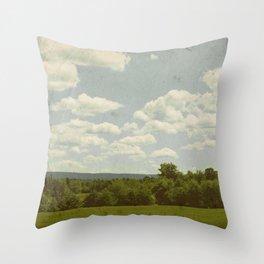 Forgotten Summer Throw Pillow