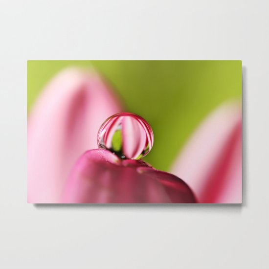Candy Stripe with Green Metal Print