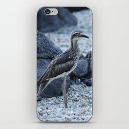 Curlew bird on the beach at Daydream Island Whitsundays iPhone Skin