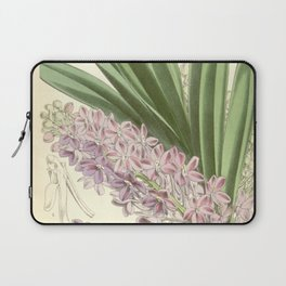 Saccolabium ampullaceum Laptop Sleeve