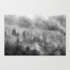 Misty forest. BW Canvas Print