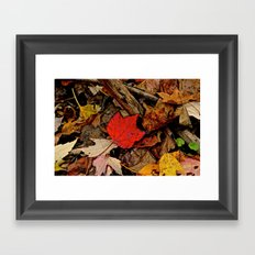 The Fallen Framed Art Print